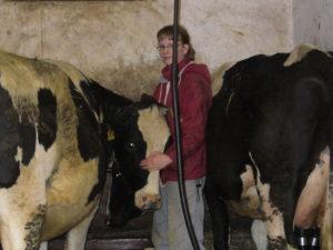 Der Traum von der Landwirtschaft